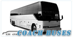 Buffalo Coach Buses rental