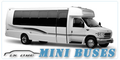 Mini Bus rental in Buffalo, NY