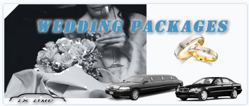 Buffalo Wedding Limos